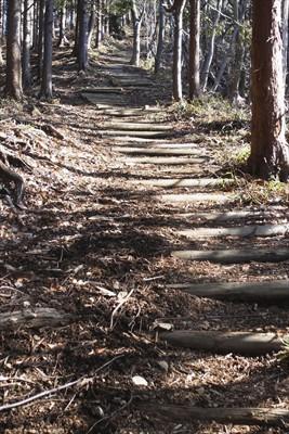階段地獄・・・。でも、段差が低...