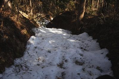 雪が深い所もある。でも、日陰の...