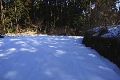 雪の上に車のタイヤの跡がクッキ...