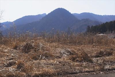 変わった形の山・・・でもこの山...