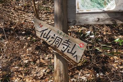 ここから、仙洞寺山への尾根に取...