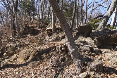 この辺りの尾根は岩がゴロゴロし...