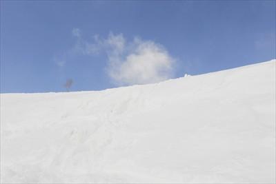 稜線まであとチョット。...