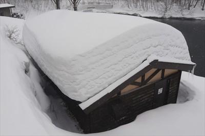 屋根に積もった雪が美味しそう〜...