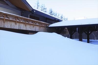 雪の山を伝って屋根に登れそう・...