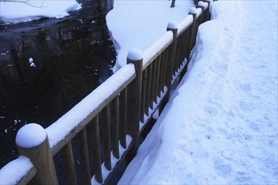 木道の雪も欄干とほぼ同じ高さま...