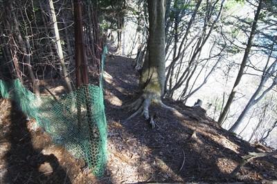 鹿柵の脇を下ります。...