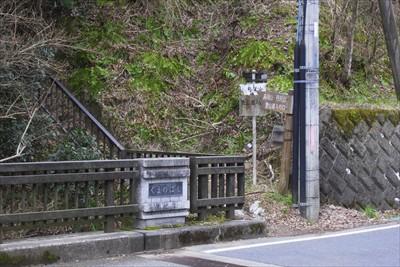 丹沢三峰を越えて丹沢山への登山...