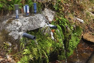 水場。水筒の水はほとんど減って...