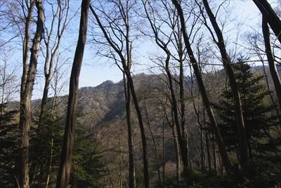 視界が開けて、高取山が見えます...
