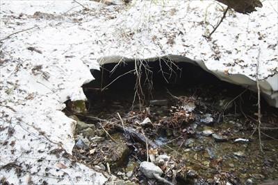 おっ! 雪のトンネルがある。気...
