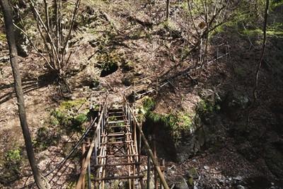 でも、そもそもこの橋は渡ること...