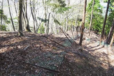 ・・・少し登り返して、鹿柵が倒...