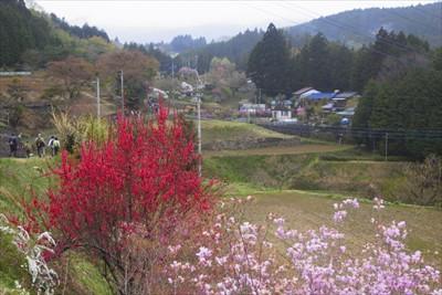 日本の原風景のような里山風景が...