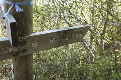 赤坂山まで3.1km。...