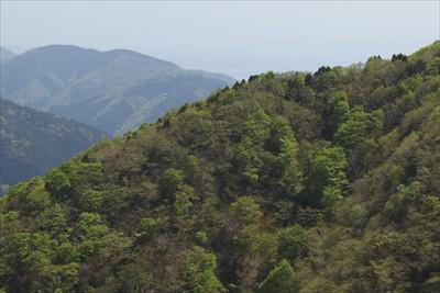 琵琶湖も微かに見える。...