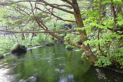清水川。...