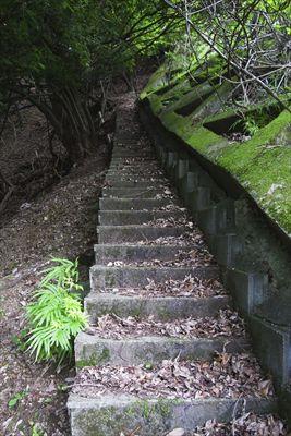 ・・・尾根の稜線に向かって階段...