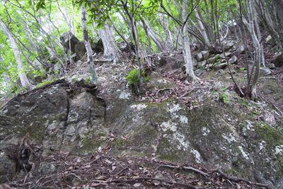 少し登ると大岩に行く手を阻まれ...