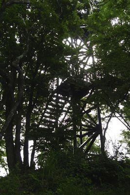 最後は山頂の展望台を目指して登...