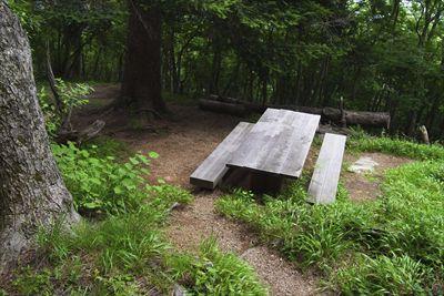 ここにもベンチがある。ここは尾...