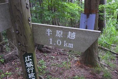 半原越まであと1kmってことは...