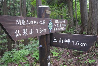 土山峠への分岐。...