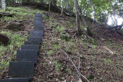 あとは階段伝いにひたすら登る・...