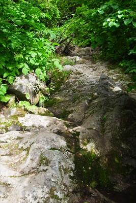 段々と岩登りの様相を呈してくる...