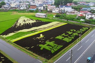 こっちは富士山。うっ、右下に自...