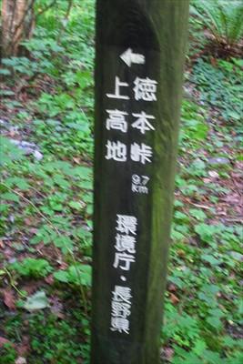 徳本峠までは9.7km。結構あ...
