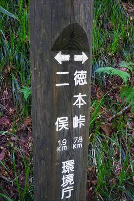 徳本峠まで7.8km。岩魚留か...