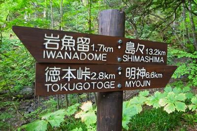 徳本峠まで2.8km。...