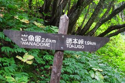 徳本峠まで1.9km。...