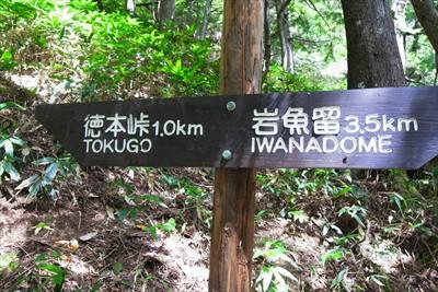 徳本峠まであと1km。ルートは...