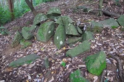 石碑の後ろの斜面に不自然に散ら...