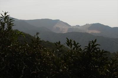 相州アルプスの砕石場が見える。...