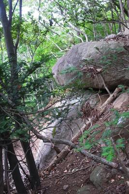 所々に大岩がある。丁目石はこう...