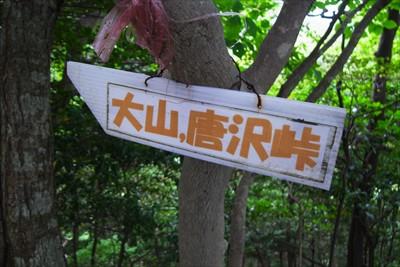 ここから大山にも唐沢峠経由で行...