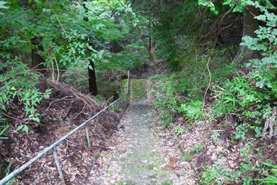 山門に続く階段を下ります。...