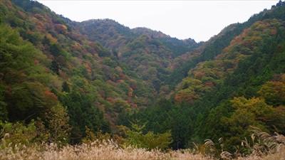 仏果山方向、山頂は陰になってい...