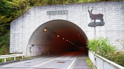 向山トンネルを越えて・・・...