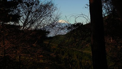 登り始めてすぐに富士山が見えて...