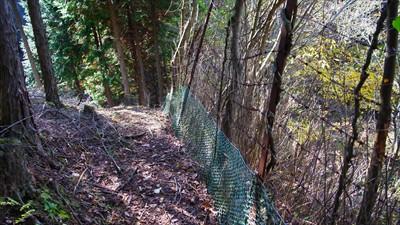 また、鹿柵だ。これを越えるのか...