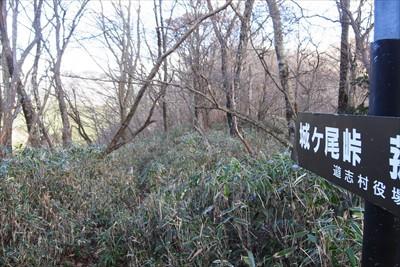 城ヶ尾峠に向かいます。...