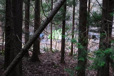 樹林帯の中にテントや車が見える...