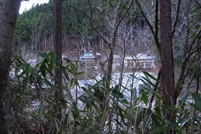 まだ木々の間から民家が見える。...