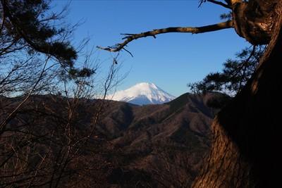ベンチに座ると松越しの富士山が...