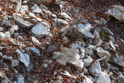 白っぽい石がゴロゴロしている。...