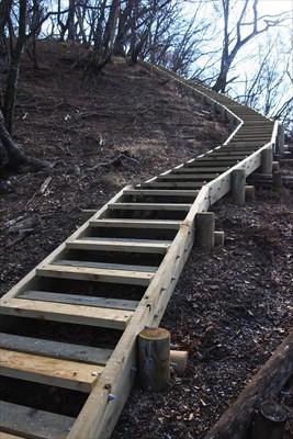 新しい階段を登る。...